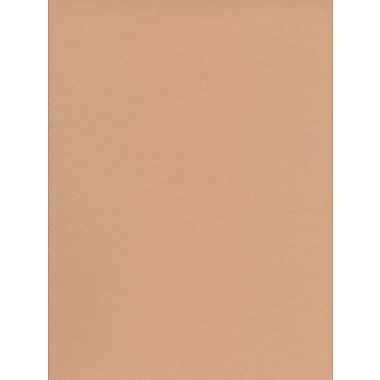Canson Mi-Teintes Tinted Paper oyster 19 in. x 25 in. [Pack of 10]
