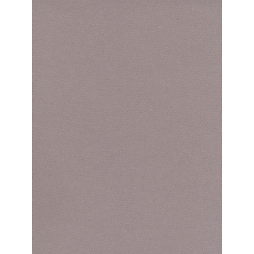 Canson Mi-Teintes Tinted Paper flannel grey 19 in. x 25 in. [Pack of 10]
