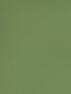 Canson Mi-Teintes Tinted Paper green 19 in. x 25 in. [Pack of 10]