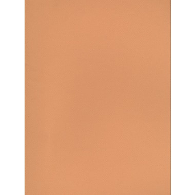 Canson Mi-Teintes Tinted Paper hemp 19 in. x 25 in. [Pack of 10]