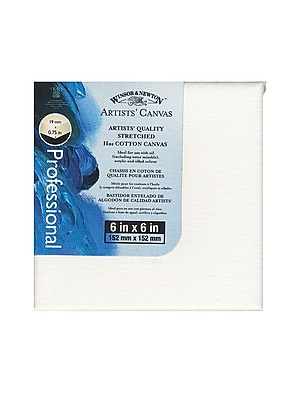 Winsor and Newton Artists' Canvas, 6