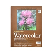 Strathmore 400 Series Watercolor Pad 9 in. x 12 in. block of 15 [Pack of 2]