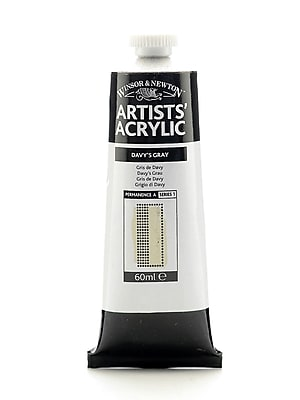 Winsor and Newton Professional Acrylic Colours Davy's gray 60 ml 217 [Pack of 2]
