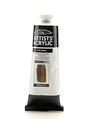 Winsor and Newton Professional Acrylic Colours raw umber 60 ml 554 [Pack of 2]