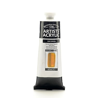 Winsor and Newton Professional Acrylic Colours raw sienna 60 ml 552 [Pack of 2]