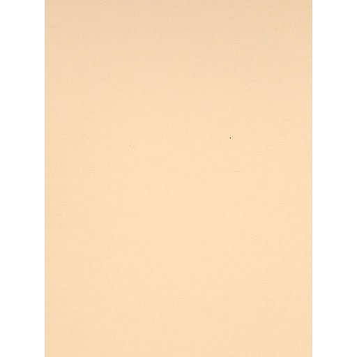 Canson Colorline 19in x 25in Cream 300 GSM Heavyweight Paper Sheets, 10/Pack (60435-PK10)