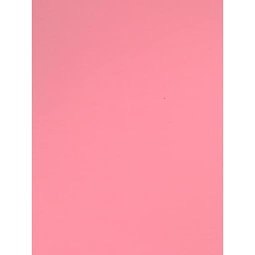 "Canson Colorline Heavyweight Paper Sheets 19"" x 25"" Rose Petal 300 gsm Pack of 10 (60444-PK10)"
