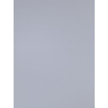 Canson Colorline 19in x 25in Light Gray 300 GSM Heavyweight Paper Sheets, 10/Pack (60464-PK10)