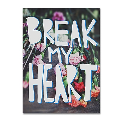 Trademark Fine Art Leah Flores 'Break My Heart' 24 x 32 (ALI0684-C2432GG)