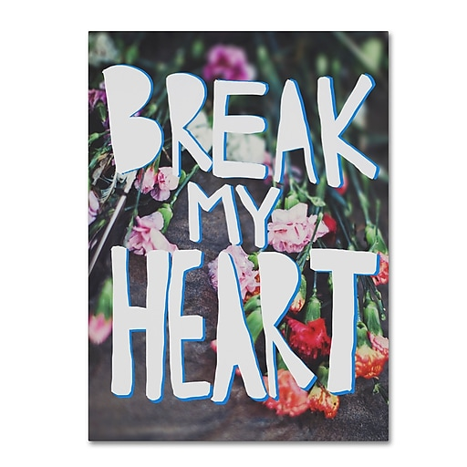 Trademark Fine Art Leah Flores 'Break My Heart'  18 x 24 (ALI0684-C1824GG)