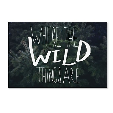 Trademark Fine Art Leah Flores 'Where the Wild Things Are' 30 x 47 (ALI0715-C3047GG)