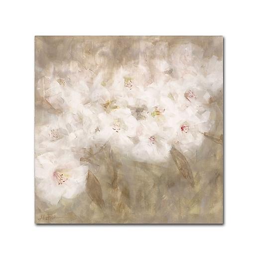 Trademark Fine Art Li Bo 'Wild Flowers I'  24 x 24 (ALI0750-C2424GG)
