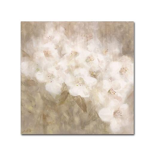 Trademark Fine Art Li Bo 'Wild Flowers II'  35 x 35 (ALI0751-C3535GG)