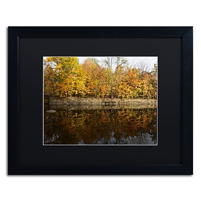 Trademark Fine Art Kurt Shaffer 'Autumn Along the Rocky River' 16 x 20 (886511701403)