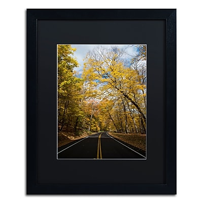 Trademark Fine Art Kurt Shaffer 'Autumn Along the Valley Parkway 2' 16 x 20 (886511701502)