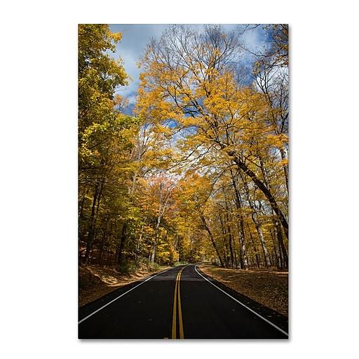 Trademark Fine Art Kurt Shaffer 'Autumn Along the Valley Parkway 2'  16 x 24 (KS01018-C1624GG)