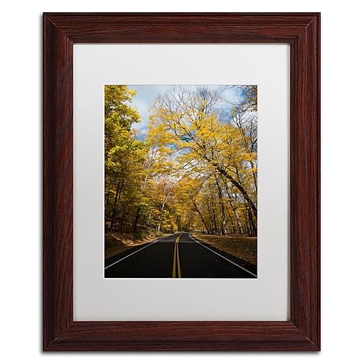 Trademark Fine Art Kurt Shaffer 'Autumn Along the Valley Parkway 2'  11 x 14 (KS01018-W1114MF)
