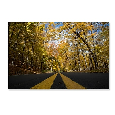 Trademark Fine Art Kurt Shaffer 'Autumn Along the Valley Parkway' 12 x 19 (KS01019-C1219GG)