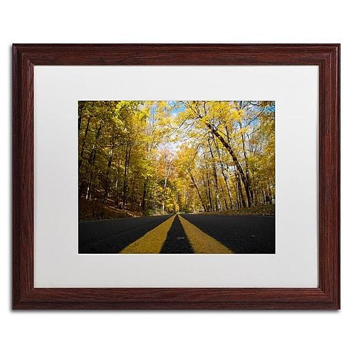 Trademark Fine Art Kurt Shaffer 'Autumn Along the Valley Parkway'  16 x 20 (KS01019-W1620MF)