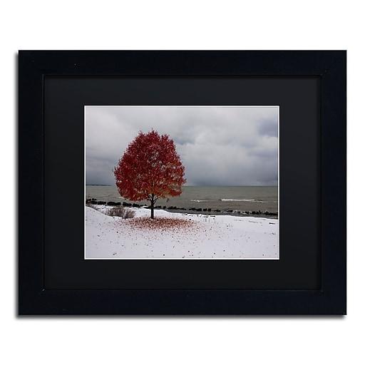 Trademark Fine Art Kurt Shaffer 'Autumn Contrast on the Lake'  11 x 14 (886511701687)