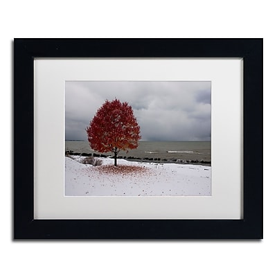 Trademark Fine Art Kurt Shaffer 'Autumn Contrast on the Lake' 11 x 14 (KS01020-B1114MF)
