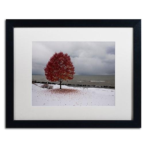 Trademark Fine Art Kurt Shaffer 'Autumn Contrast on the Lake'  16 x 20 (KS01020-B1620MF)