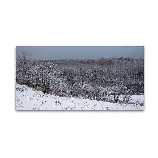 Trademark Fine Art Kurt Shaffer 'Autumn Snowfall'  10 x 19 (KS01023-C1019GG)