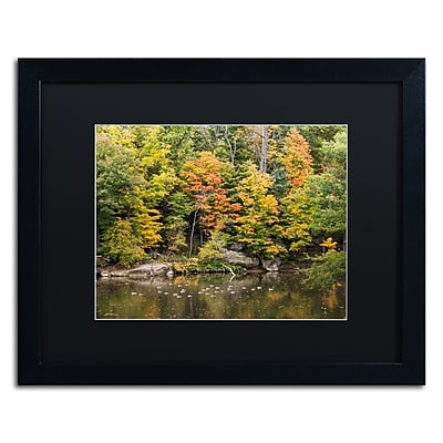 Trademark Fine Art Kurt Shaffer 'Early Fall' 16 x 20 (886511702585)
