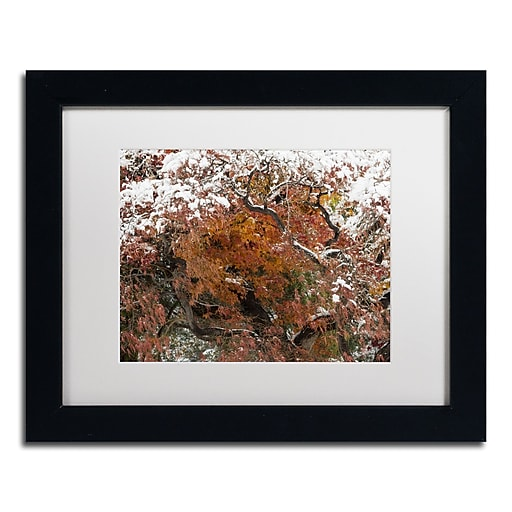 Trademark Fine Art Kurt Shaffer 'Early Snow Fall'  11 x 14 (KS01032-B1114MF)