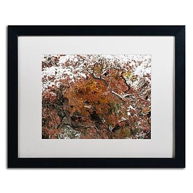 Trademark Fine Art Kurt Shaffer 'Early Snow Fall' 16 x 20 (KS01032-B1620MF)