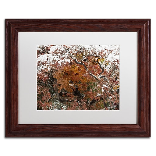 Trademark Fine Art Kurt Shaffer 'Early Snow Fall'  11 x 14 (KS01032-W1114MF)