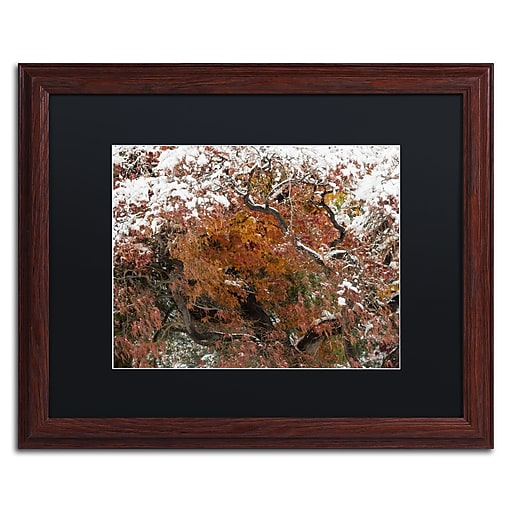 Trademark Fine Art Kurt Shaffer 'Early Snow Fall'  16 x 20 (886511702745)