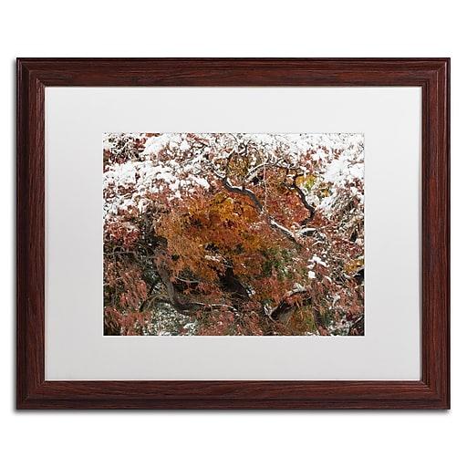 Trademark Fine Art Kurt Shaffer 'Early Snow Fall'  16 x 20 (KS01032-W1620MF)