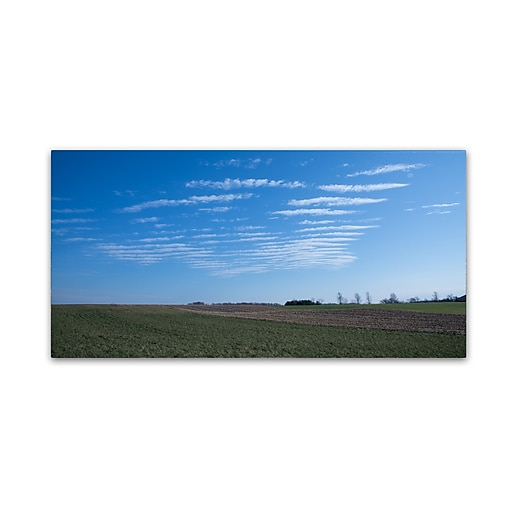 Trademark Fine Art Kurt Shaffer 'Fields at Rest for Winter'  10 x 19 (KS01033-C1019GG)