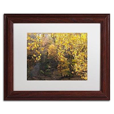 Trademark Fine Art Kurt Shaffer 'Golden Autumn 2' 11 x 14 (KS01034-W1114MF)
