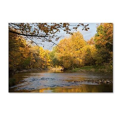 Trademark Fine Art Kurt Shaffer 'Golden Autumn River' 16 x 24 (KS01036-C1624GG)