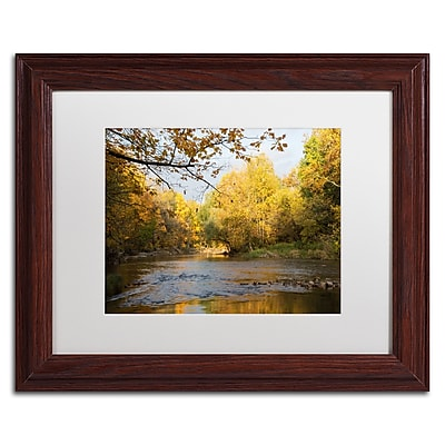 Trademark Fine Art Kurt Shaffer 'Golden Autumn River' 11 x 14 (KS01036-W1114MF)