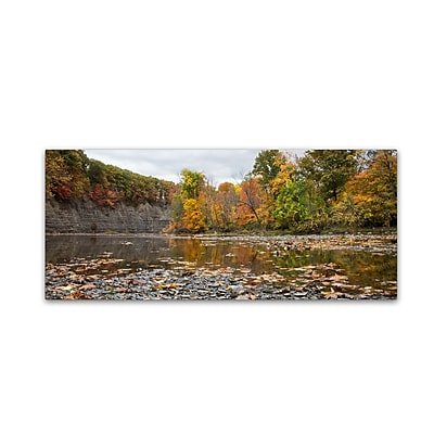 Trademark Fine Art Kurt Shaffer 'Rocky River Autumn' 8 x 19 (KS01044-C819GG)