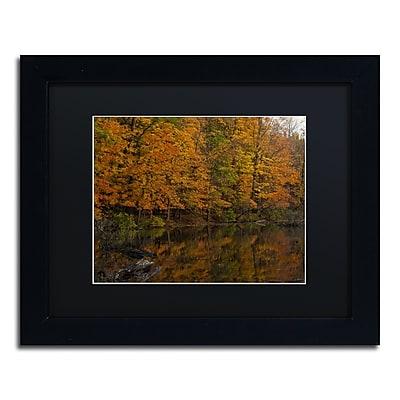 Trademark Fine Art Kurt Shaffer 'Still Golden Reflections' 11 x 14 (886511703780)