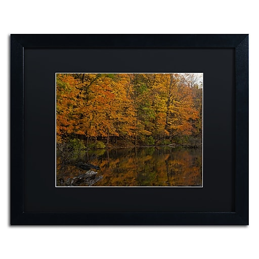 Trademark Fine Art Kurt Shaffer 'Still Golden Reflections'  16 x 20 (886511703803)