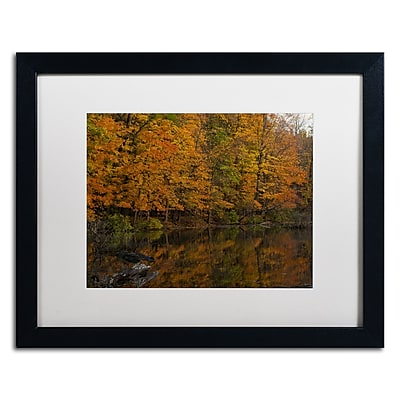 Trademark Fine Art Kurt Shaffer 'Still Golden Reflections' 16 x 20 (KS01047-B1620MF)