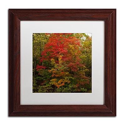 Trademark Fine Art Kurt Shaffer 'Why I Love Autumn 2' 11 x 11 (KS01052-W1111MF)