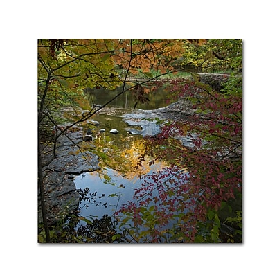 Trademark Fine Art Kurt Shaffer 'Why I Love Autumn 3' 24 x 24 (KS01053-C2424GG)