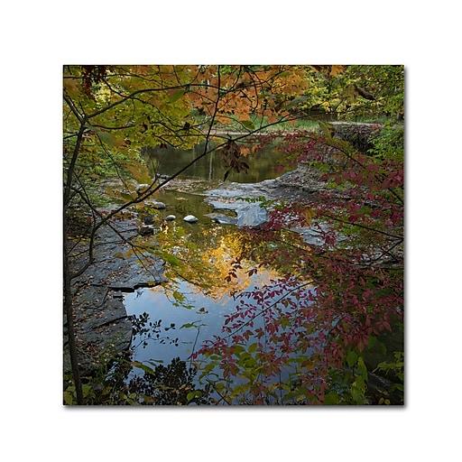 Trademark Fine Art Kurt Shaffer 'Why I Love Autumn 3'  35 x 35 (KS01053-C3535GG)