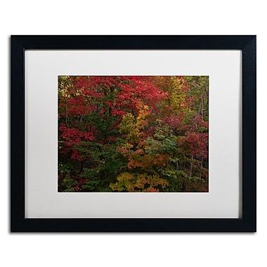 Trademark Fine Art Kurt Shaffer 'Why I Love Autumn' 16 x 20 (KS01054-B1620MF)