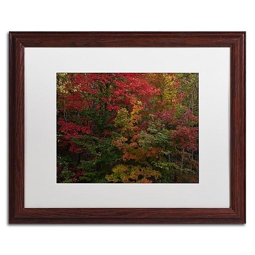 Trademark Fine Art Kurt Shaffer 'Why I Love Autumn'  16 x 20 (KS01054-W1620MF)