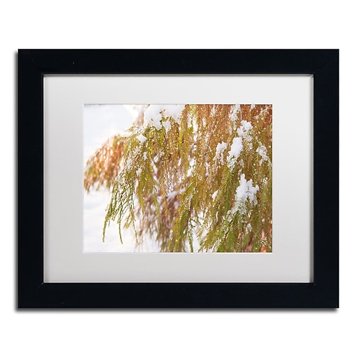 Trademark Fine Art Kurt Shaffer 'Winter on Redwood'  11 x 14 (KS01055-B1114MF)