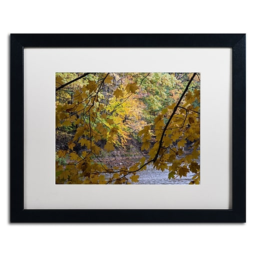 Trademark Fine Art Kurt Shaffer 'Brilliant Ohio Autumn'  16 x 20 (KS01059-B1620MF)
