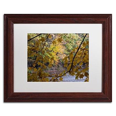 Trademark Fine Art Kurt Shaffer 'Brilliant Ohio Autumn' 11 x 14 (KS01059-W1114MF)