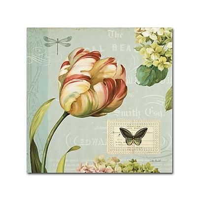 Trademark Fine Art Lisa Audit 'Mothers Treasure I' 14 x 14 (WAP0185-C1414GG)